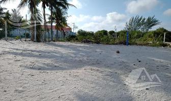Foto de terreno habitacional en venta en  , celestun, celestún, yucatán, 0 No. 01