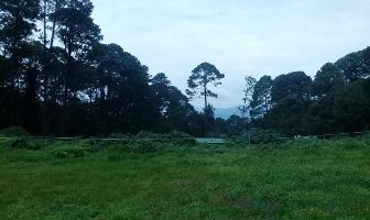 Foto de terreno habitacional en venta en  , cerro gordo, valle de bravo, méxico, 10779723 No. 01