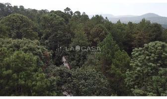 Foto de terreno habitacional en venta en  , cerro gordo, valle de bravo, méxico, 6845118 No. 01