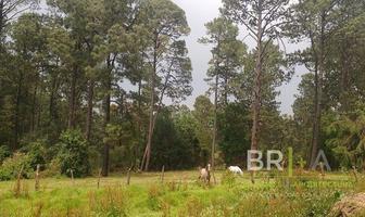 Foto de terreno habitacional en venta en cerro gordo, valle de bravo , valle de bravo, valle de bravo, méxico, 0 No. 01