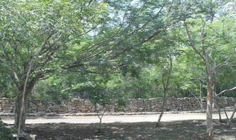 Foto de terreno habitacional en venta en  , chablekal, mérida, yucatán, 0 No. 01