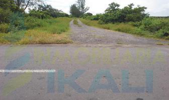 Foto de terreno habitacional en venta en  , chalchihuecan, veracruz, veracruz de ignacio de la llave, 11032934 No. 01