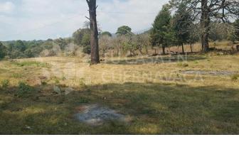Foto de terreno habitacional en venta en  , chamilpa, cuernavaca, morelos, 5832538 No. 01