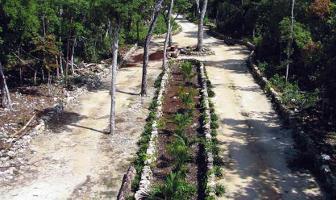 Foto de terreno habitacional en venta en chemuyil lote 10 , playa del carmen, solidaridad, quintana roo, 0 No. 01