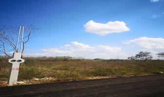 Foto de terreno habitacional en venta en  , chichi suárez, mérida, yucatán, 12071544 No. 01