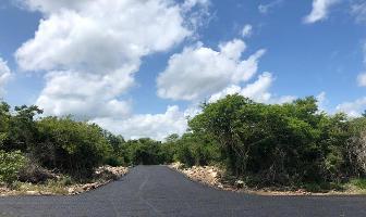 Foto de terreno habitacional en venta en  , chicxulub, chicxulub pueblo, yucatán, 10474309 No. 01