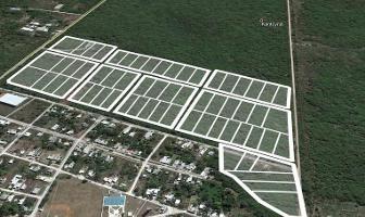 Foto de terreno habitacional en venta en  , chicxulub, chicxulub pueblo, yucatán, 11781081 No. 01