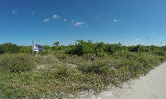 Foto de terreno habitacional en venta en  , chicxulub, chicxulub pueblo, yucatán, 12419819 No. 01