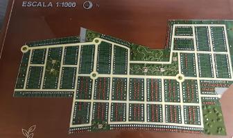 Foto de terreno habitacional en venta en  , chicxulub, chicxulub pueblo, yucatán, 12683611 No. 03
