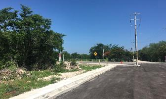 Foto de terreno habitacional en venta en  , chicxulub, chicxulub pueblo, yucatán, 14113009 No. 01