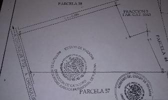 Foto de terreno habitacional en venta en  , chicxulub, chicxulub pueblo, yucatán, 14278622 No. 01