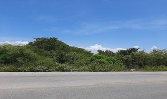 Foto de terreno comercial en venta en  , chicxulub puerto, progreso, yucatán, 15623053 No. 01