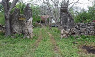 Foto de casa en venta en  , chiquila, tecoh, yucatán, 5212172 No. 01