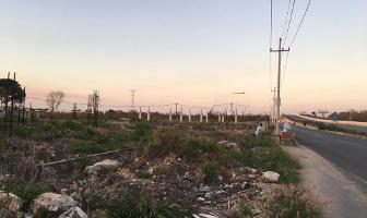 Foto de terreno habitacional en renta en  , cholul, mérida, yucatán, 0 No. 01