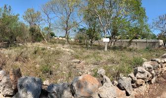 Foto de terreno habitacional en venta en  , cholul, mérida, yucatán, 13771829 No. 01