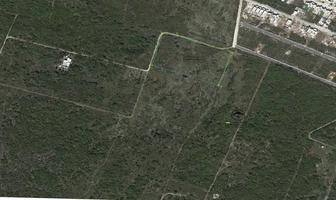 Foto de terreno habitacional en venta en  , cholul, mérida, yucatán, 14302293 No. 01
