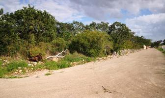 Foto de terreno habitacional en venta en  , cholul, mérida, yucatán, 0 No. 02