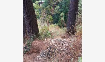 Foto de terreno habitacional en venta en circuito oyamel , del bosque, cuernavaca, morelos, 3366376 No. 01