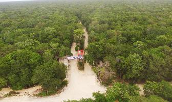 Foto de terreno habitacional en venta en  , ciudad chemuyil, tulum, quintana roo, 9760901 No. 01