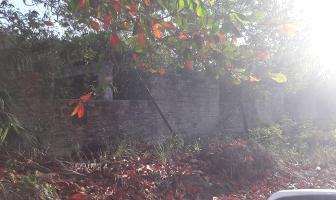 Foto de terreno habitacional en venta en  , colegios, benito juárez, quintana roo, 9486029 No. 01