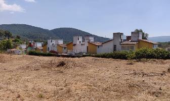 Foto de terreno habitacional en venta en colonos , valle de bravo, valle de bravo, méxico, 0 No. 01