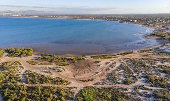 Foto de terreno habitacional en venta en  , comitán, la paz, baja california sur, 11374269 No. 01