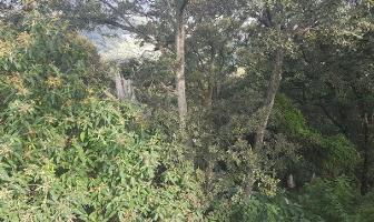 Foto de terreno habitacional en venta en  , condado de sayavedra, atizapán de zaragoza, méxico, 11770017 No. 01