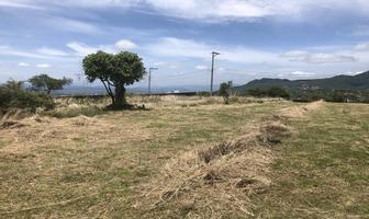 Foto de terreno habitacional en venta en conjunto lomas del paraíso ii , tlayacapan, tlayacapan, morelos, 9755340 No. 01