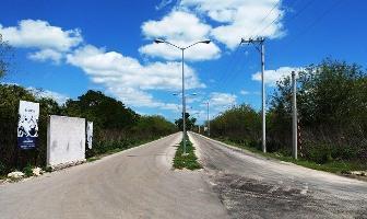 Foto de terreno habitacional en venta en  , conkal, conkal, yucatán, 13811683 No. 01