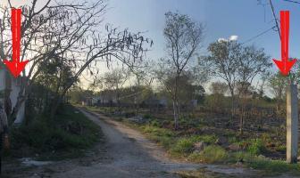 Foto de terreno habitacional en venta en  , conkal, conkal, yucatán, 14260976 No. 01