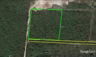 Foto de terreno habitacional en venta en  , conkal, conkal, yucatán, 14279005 No. 01