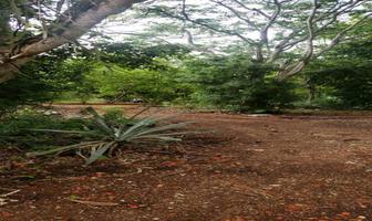 Foto de terreno habitacional en venta en  , conkal, conkal, yucatán, 18200480 No. 01