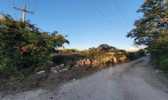 Foto de terreno habitacional en venta en  , conkal, conkal, yucatán, 19420112 No. 01