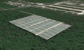 Foto de terreno habitacional en venta en  , conkal, conkal, yucatán, 3524794 No. 01