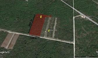 Foto de terreno habitacional en venta en  , conkal, conkal, yucatán, 6000914 No. 01