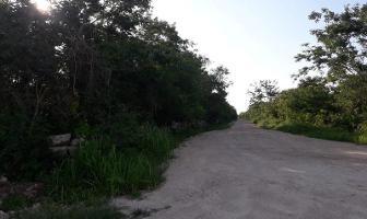 Foto de terreno habitacional en venta en  , conkal, conkal, yucatán, 6638409 No. 01