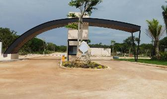 Foto de terreno habitacional en venta en  , conkal, conkal, yucatán, 6956569 No. 01