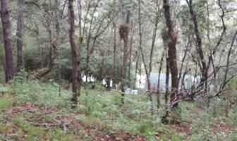 Foto de terreno habitacional en venta en  , corral de piedra, san cristóbal de las casas, chiapas, 7534479 No. 01