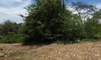 Foto de terreno habitacional en venta en cortez , rincón de guayabitos, compostela, nayarit, 4006263 No. 01