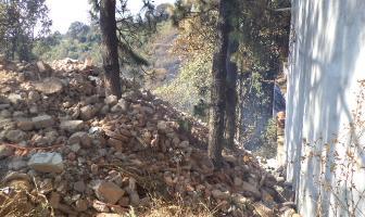Foto de terreno habitacional en venta en  , del bosque, cuernavaca, morelos, 4909255 No. 02