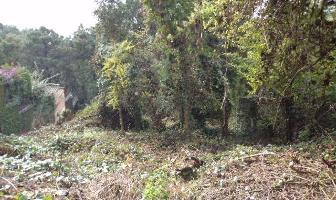 Foto de terreno habitacional en venta en  , del bosque, cuernavaca, morelos, 7115364 No. 01