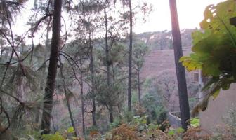 Foto de terreno habitacional en venta en  , del bosque, cuernavaca, morelos, 9266743 No. 01