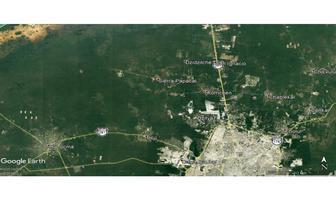 Foto de terreno habitacional en venta en  , del norte, mérida, yucatán, 18076623 No. 01