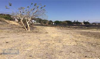 Foto de terreno habitacional en venta en diego díaz gonzález , centro jiutepec, jiutepec, morelos, 6447690 No. 01