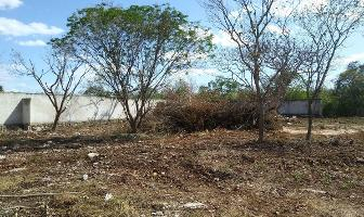 Foto de terreno habitacional en venta en  , dzitya, mérida, yucatán, 12646632 No. 01