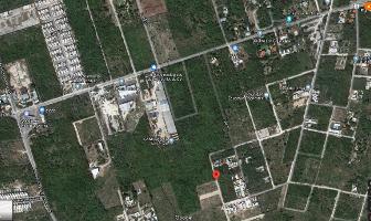 Foto de terreno habitacional en venta en  , dzitya, mérida, yucatán, 13811511 No. 01