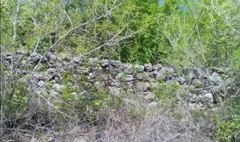 Foto de terreno habitacional en venta en  , dzitya, mérida, yucatán, 14177927 No. 01