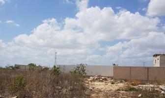 Foto de terreno habitacional en venta en  , dzitya, mérida, yucatán, 14222283 No. 01