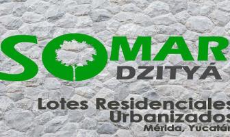 Foto de terreno habitacional en venta en  , dzitya, mérida, yucatán, 0 No. 01