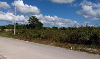 Foto de terreno habitacional en venta en  , dzitya, mérida, yucatán, 4395057 No. 01